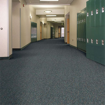 Philadelphia Commercial Carpet | Springfield, VA
