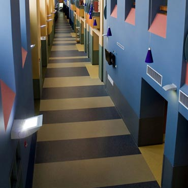 Johnsonite® Commerical Flooring | Springfield, VA